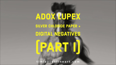 Adox Lupex Silver Chloride Contact Paper + Digital Negatives Part I by Tim Layton