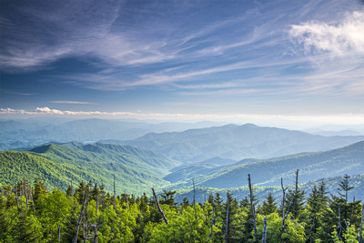 View From Clingman's Dome in Smoky Mountain National Forest