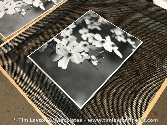 How To Create B&W Fine Art Prints in the Darkroom by Tim Layton