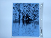 8x10 X-Ray Negative for Platinum Print
