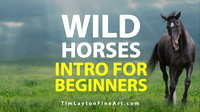 Introduction To Wild Horses For Beginners by Tim Layton