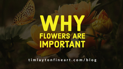 Why Flowers Are Important by Tim Layton