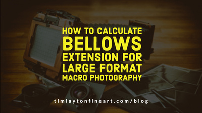 How To Calculate Bellows Extension For Large Format Macro Photography by Tim Layton