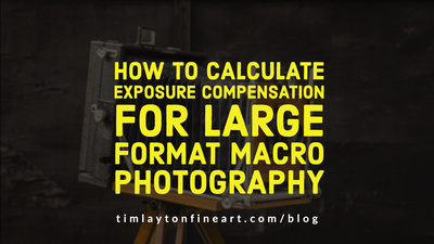 How To Calculate Exposure Compensation For Large Format Macro Photography by Tim Layton