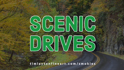 Scenic Drives - Great Smoky Mountains National Park by Tim Layton