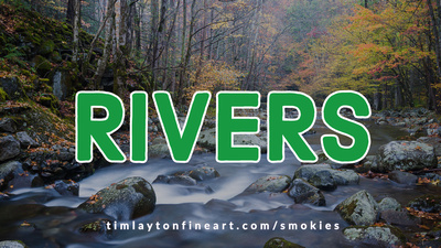 Rivers - Great Smoky Mountains National Park by Tim Layton