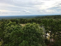 View from Fire Tower at Stegall Mountain