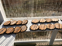 Drying the freshly cut coasters