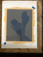 Step 4 - Loaded the negative and the dried sensitized paper into the printing frame.